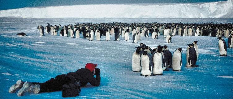 Antarctica is a photographer's dream