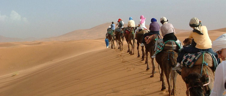 Camel riding in Morocco's Sahara desert