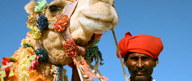 Enjoy a camel safari in India's Rajasthan
