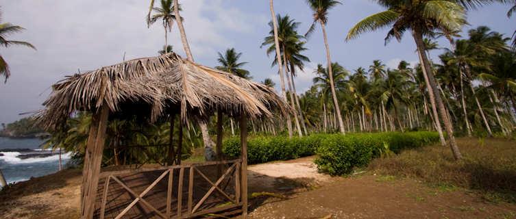 Idylic palms by the beach, Sao Tome e Principe
