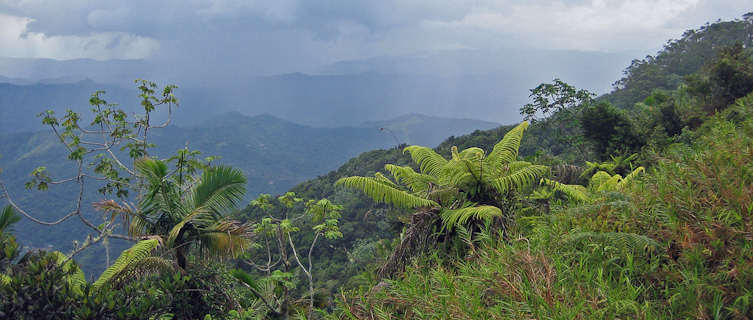 South shore from Puerto Rico's Jayuya mountains