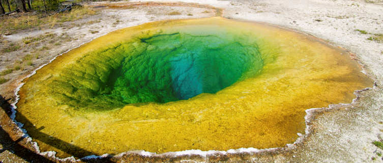 The Morning Glory Pool, Yellowstone National Park