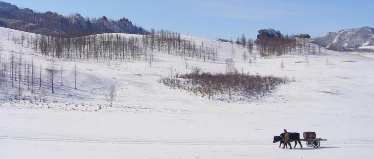 Winter in Gorkhi-Terelj National Park